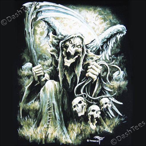 Details About Grim Reaper Wings Skull Death Horror Gothic