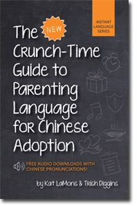 """The Crunch-Time Guide to Parenting Language for Chinese Adoption by Kat LaMons and Trish Diggins.  From Amazon:  """"The absolute, must-have, can't-live-without-it, English to Chinese words and phrases adopting parents need to communicate effectively with your newly adopted child while in China and after you get home! (Plus, access to free audio downloads!)""""  Sounds like a good choice for anyone planning an adoption trip!"""