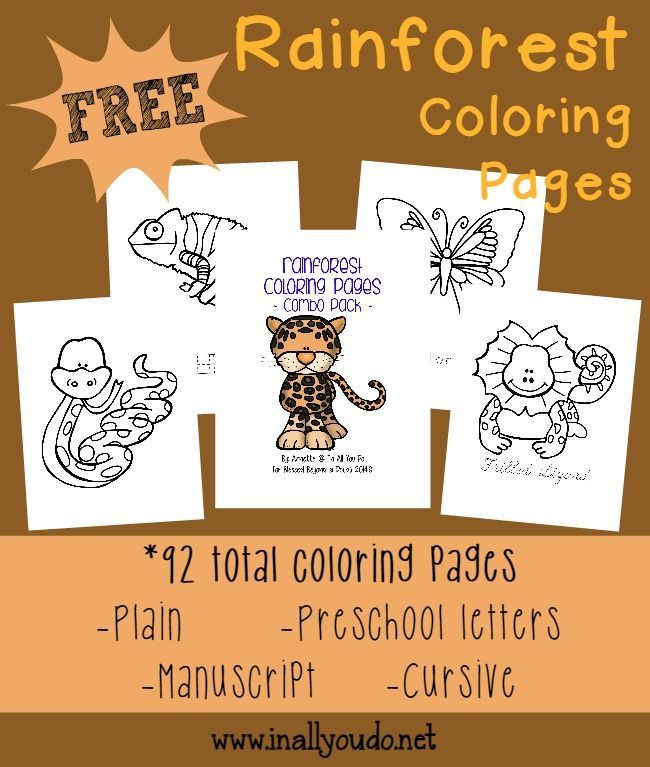Jungle Animals Coloring Pages Preschool : Best 25 animals in the rainforest ideas on pinterest of