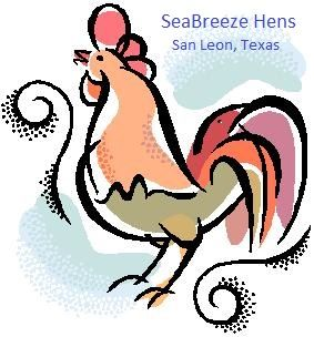 Chickens for Sale in Houston Texas, Laying Hens in Houston Texas, Hens, Chicks, Pullets,