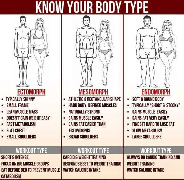 Know Your Body Type Body Types Body Type Workout Body