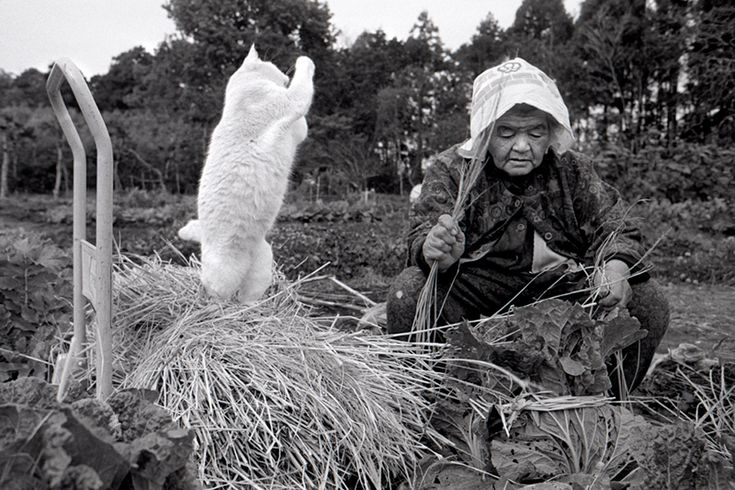 Misao and Fukumaru the Cat.