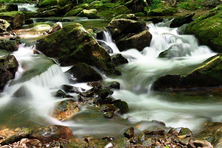 Betty Creek in Nantahala National Forest North Carolina USA. [OC] [5500x3700]