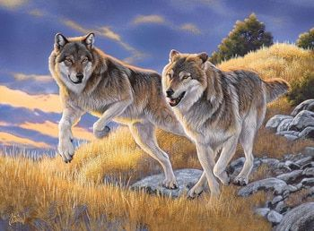 The Wolves - 500pc Jigsaw Puzzle by Clementoni | Art | Wolf