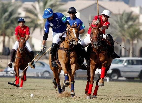 ponies :) http://horsetalkuae.com/ae/images/news/2012/zedan%20vs%20bin%20drai%201.jpg