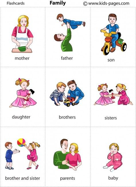 flashcards / Family 1