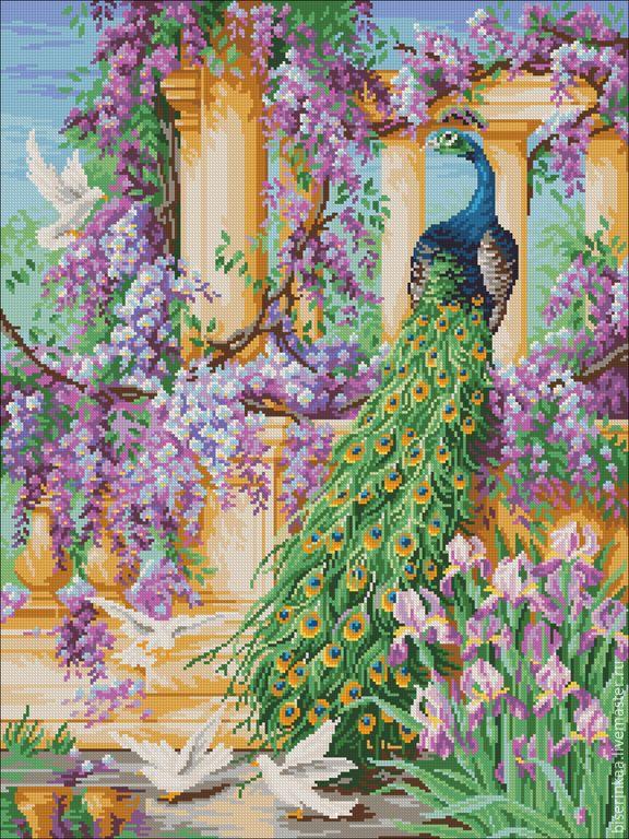 Купить Схема, Райский Сад