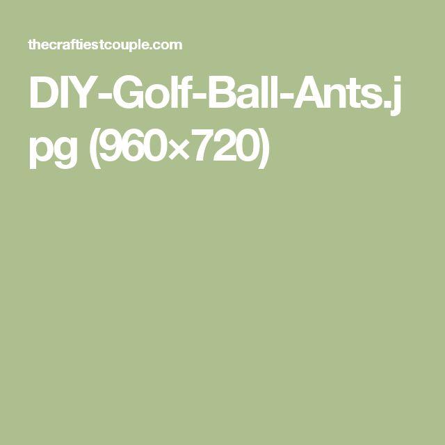 DIY-Golf-Ball-Ants.jpg (960×720)