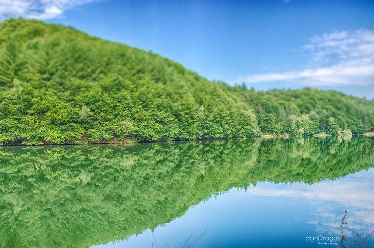 Morning on the lake, county Bihor