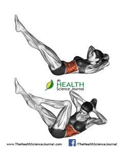 awesome All About Abs – 66 Exercises in Pictures! Bodybuilding, Calisthenics & Yoga (Part 1) - Page 4 of 4 - The Health Science Journal