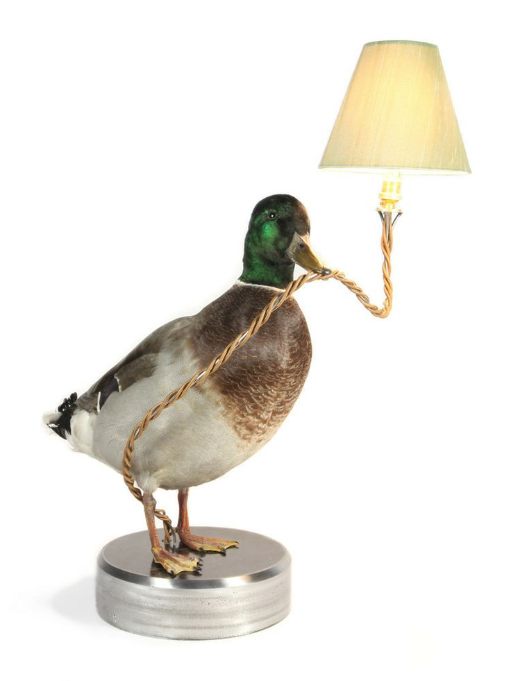 Duck Desk Lamp, £960 from alexrandall.co.uk