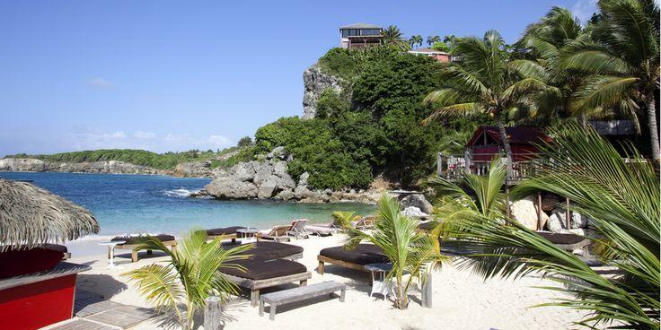 Si vous êtes à la recherche DU spot incontournable de Guadeloupe, pas la peine chercher de plus loin, l'hôtel La Toubana & Spa c'est l'institution de l'île. Ecrin de tranquillité parfaitement adapté aux amoureux, cette adresse que l'on pourrait qualifier de chic, branchée & cool, n'a jamais failli à sa réputation. Un cadre de rêve, des bungalows ultra confort, une piscine à débordement… Il vous faut impérativement lézarder sur la plage de la Toubana !