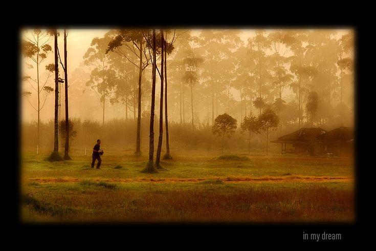 in my dream... by DonovanDennis.deviantart.com on @deviantART