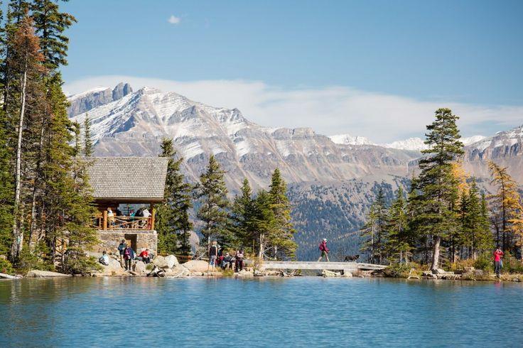 The hike to the Lake Agnes Tea House