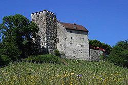 Habsburg Castle - Wikipedia, the free encyclopedia