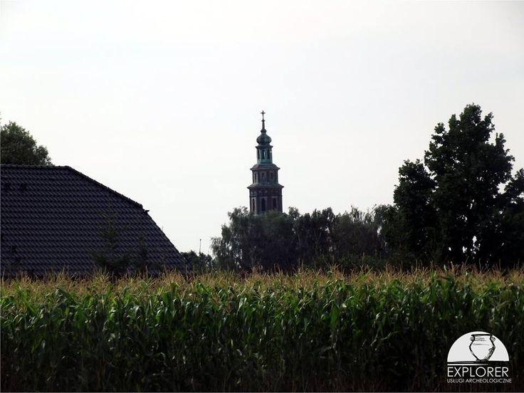 Na horyzoncie wieża kościoła św. Marcina i Wincentego w Skórzewie. Obiekt zbudowany w latach 1927-1929.