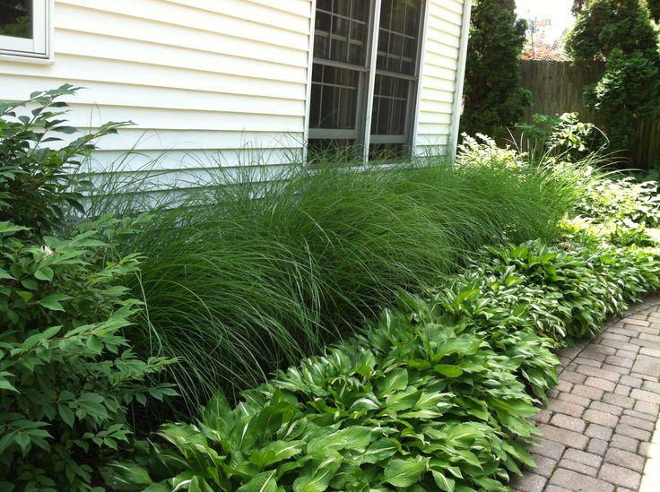 Garden Ideas Easy 25+ best side yard landscaping ideas on pinterest | simple