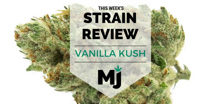Vanilla Kush #Cannabis Strain Review @https://www.marijuana.com/news/2017/11/vanilla-kush-marijuana-strain-review