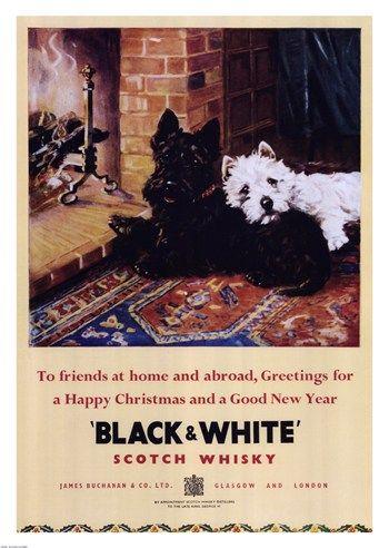 Black and White Scotch Whiskey ~ Fine-Art Print - Scottish Terrier Art Prints…