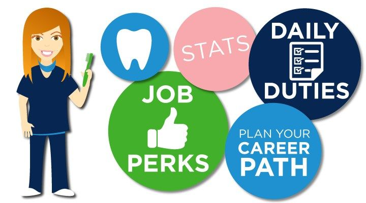 How to a dental hygienist infographic dental