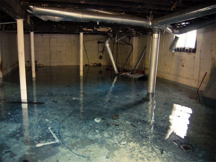 Elegant Beaver Basement Water Control System