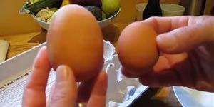 What Happens When You Open A Big Egg