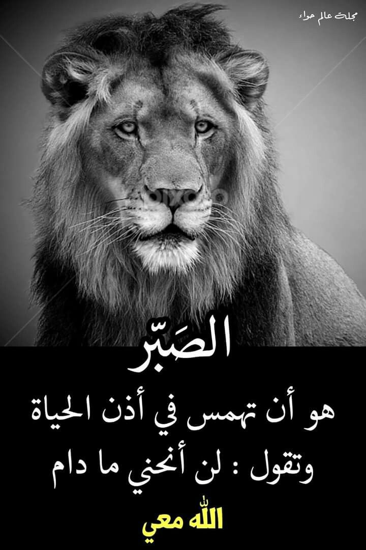 Pin By Buthaina Kadi On أقوال وحكم Funny Arabic Quotes Arabic Quotes Beautiful Arabic Words