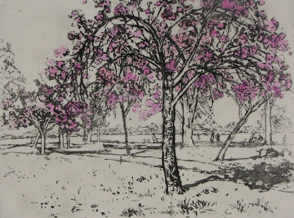'Blossom by Blossom Spring Appears' by Mary Cossey. Etching with colour wash.
