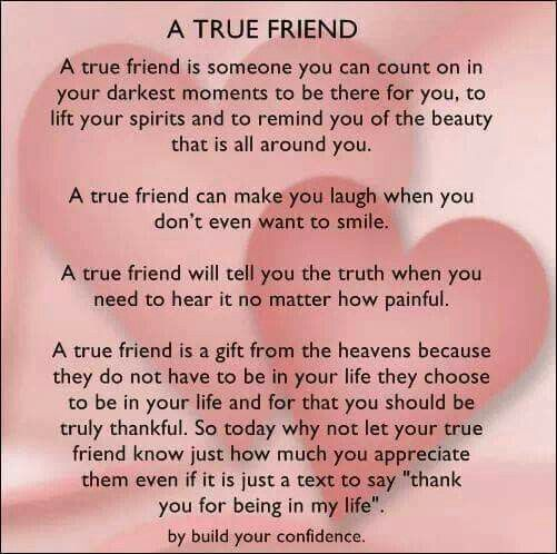 my best friend a true friendship Personal statement : my best friend 1661 words | 7 pages include friendship, happiness, dedication, adventure/exploration and curiosity the first value i focused on was friendship and i find that to be an extremely important part of life.