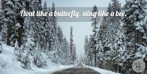 """Citations, Proverbes, Réalité ...  """"Flotte comme un papillon, pique comme une abeille"""" de Muhammad Ali  #citations_proverbes_réalité #muhammedali #flotte #papillon #pique #abeille #force #rapide"""