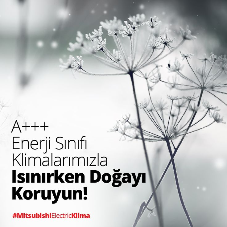 Üstün sezonsal verimlilik özellikleriyle doğa dostu klimalarımız ile tanışın. https://klima.mitsubishielectric.com.tr #MitsubishiElectricKlima #enerji #enerjitasarrufu #klima #verimlilik #mitsubishielectric #hvac #ac #ağaç #tree #doğa #yeşil #green #love #nature #amazing #beautiful #cool #landscapelovers #lifestyle #manzara #house #instanature #energy #landscape #sessizlik #orman #forest