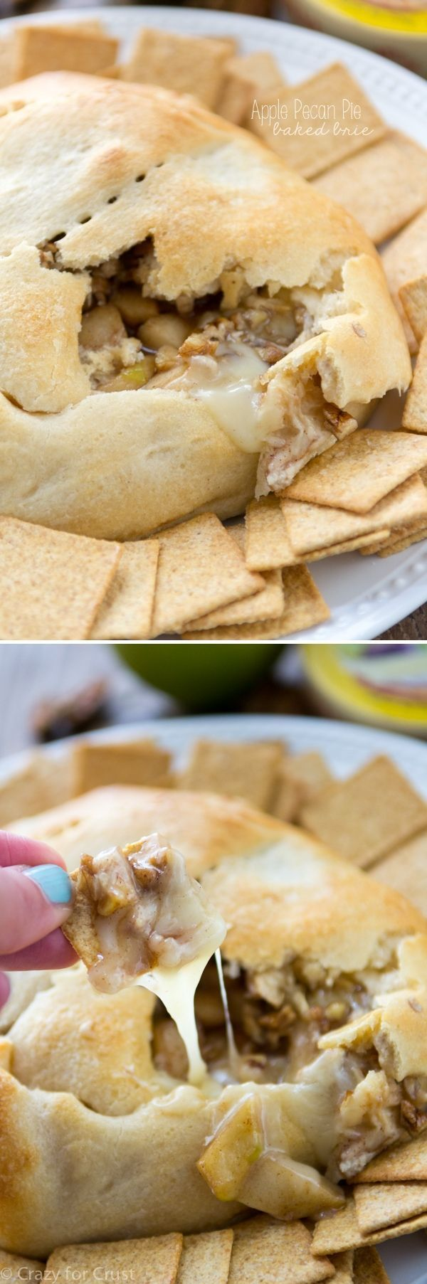 The best party appetizer ever is this  recipe for Apple Pecan Pie Baked Brie! Brie, apples, pecans, and brown sugar are baked in crescent rolls for a gooey sweet snack!