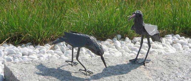 Vögel am Brunnen, die nicht in den Süden ziehen