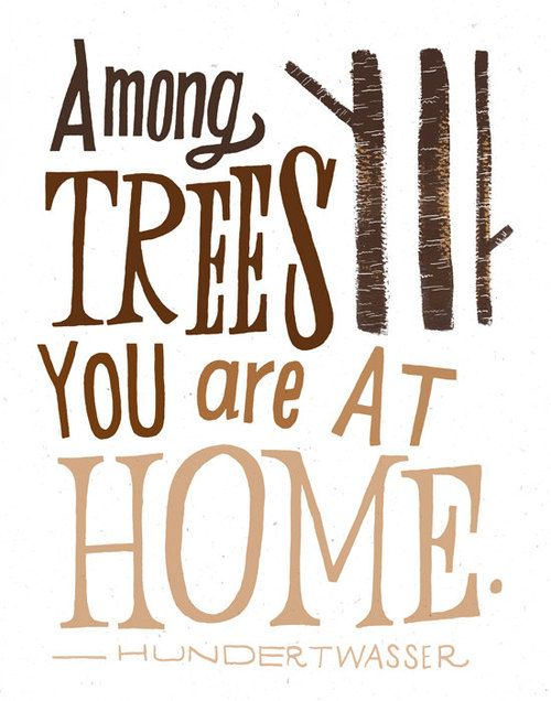 No amount of city lights or tall buildings could be my home, no matter how long I stay there. #countrylove