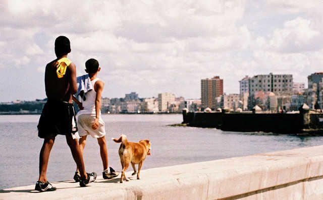 Los cubanos son conocidos por ser personas muy cariñosas y que se dejan… http://www.cubanos.guru/10-caracteristicas-de-un-amigo-cubano/