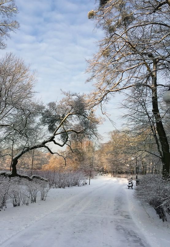 Poznan Poland, #zima w Parku Sołackim