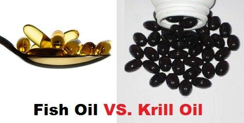 Five Reasons to Take Krill Omega 3 Supplements Vs Fish Oil