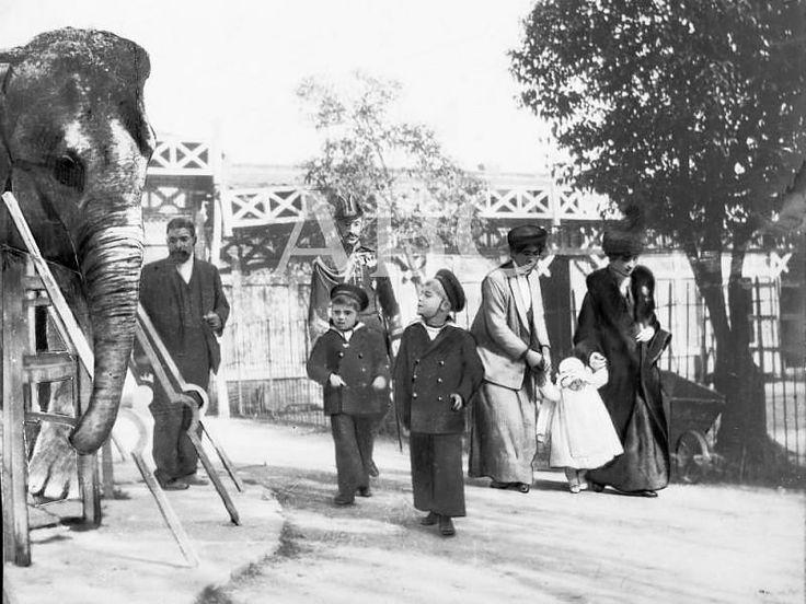 Madrid, 11 de abril de 1913. En la Casa de Fieras del Retiro: SS. AA. RR. el Príncipe de Asturias, Don Alfonso de Borbón, y sus hermanos los...