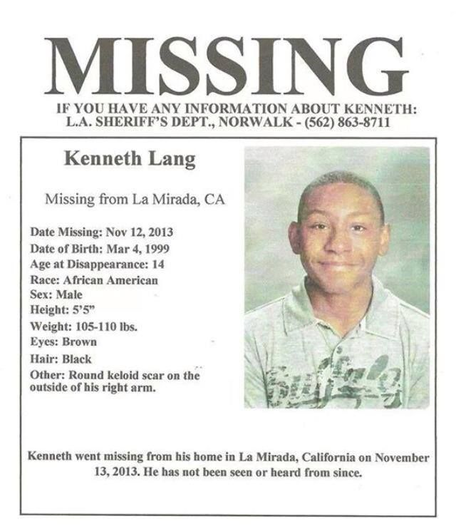 226 best Finding Family images on Pinterest Missing persons - missing child poster template