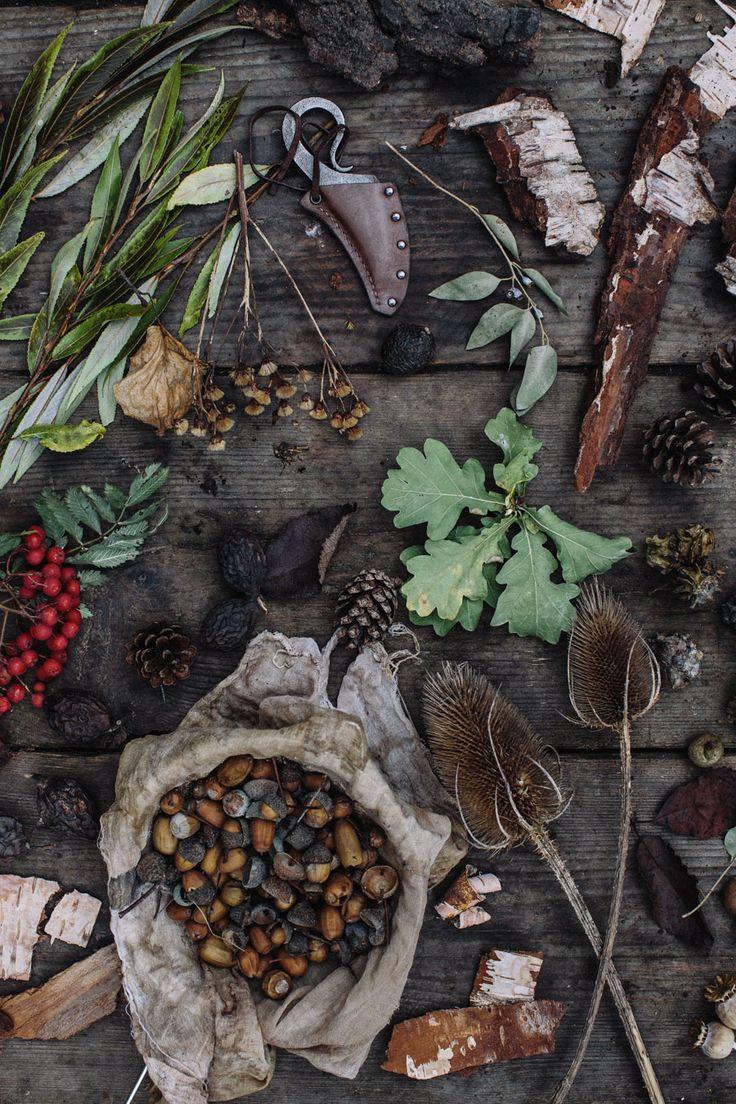 44 best Autumn images on Pinterest | Fall season, Autumn and Fall