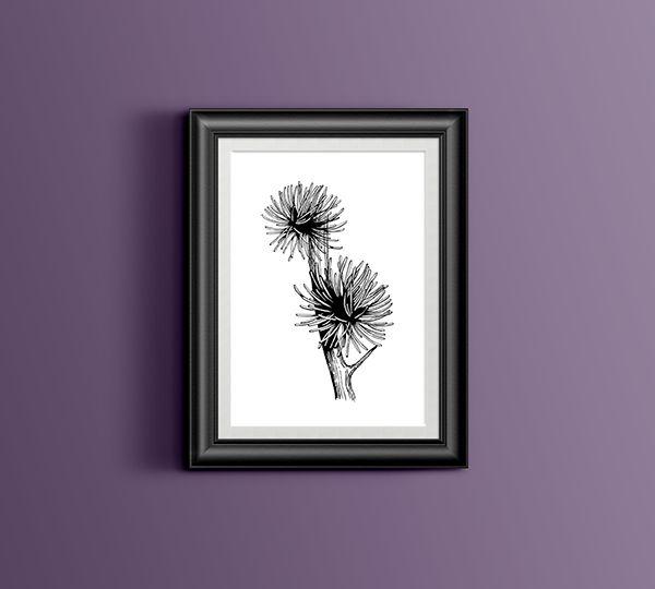 Rewarewa Woodcut Sketches / Drawings