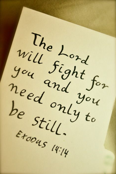 """Exodus 14:14 """"The Lord is fighting for you! So be still!"""" // Psalm 46:10-11 """"Be still, and know that I am God. I will be exalted among the nations, I will be exalted in the earth!"""" The Lord of hosts is with us; the God of Jacob is our fortress. Selah"""""""