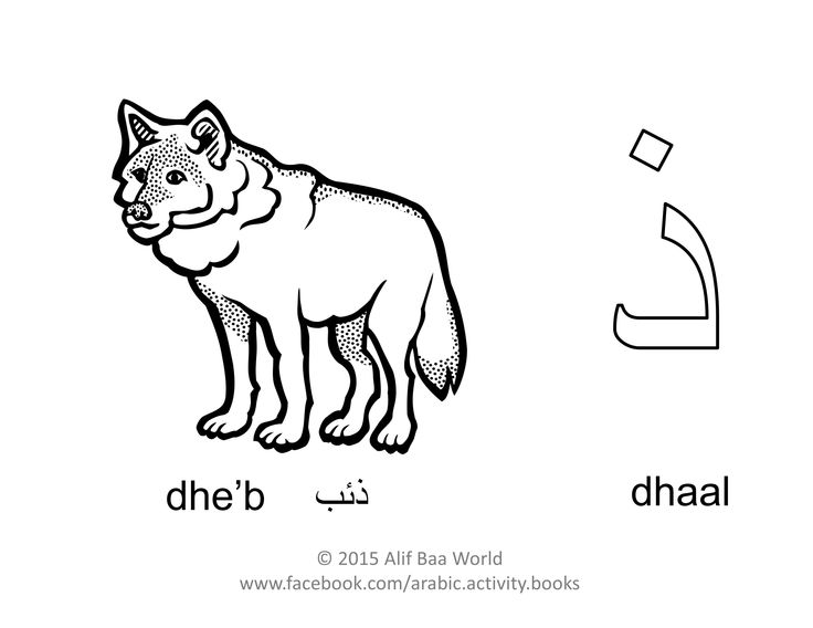 The 9th letter of the Arabic alphabet is: ذ (Name: dhaal) (Sound: dh)  for ذئب (Pronounced: dhe'b) (English: Wolf).  Print and color the letter, the animal, and draw its environment in the background. After you are done, share your finished work with your name and age in the comments below. Have fun !!!  P.S. For more fun activities, check out the Arabic Alphabet Activity Book (http://www.amazon.com/author/aliakhaled).
