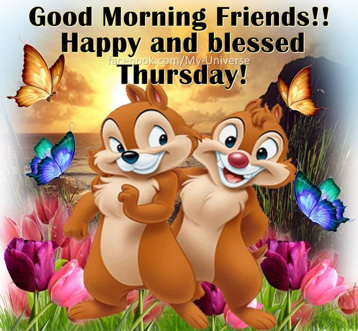 Good Morning Friends Happy And Blessed Thursday good morning thursday thursday…