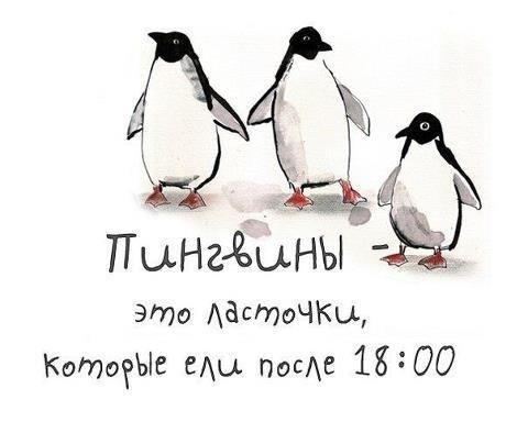 #весна #пингвины #позитивное    Все о детях и для детей! - www.baby-answer.ru