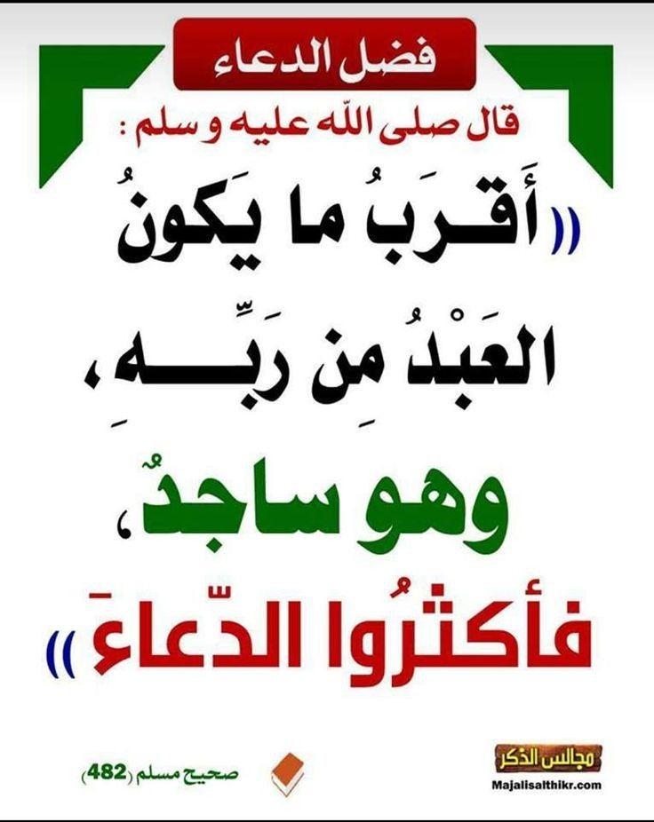 Pin By On أحاديث Ahadith Hadith Islam