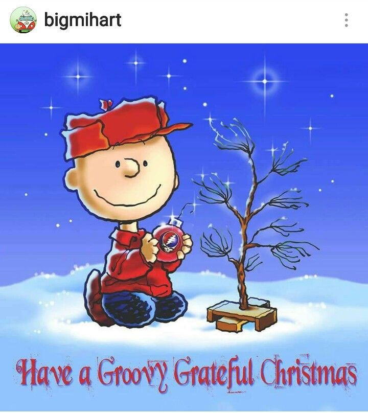Have a Groovy grateful Christmas❤✌ #CharlieBrownTree