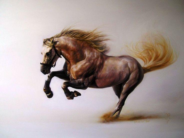 caballos salvajes - Buscar con Google