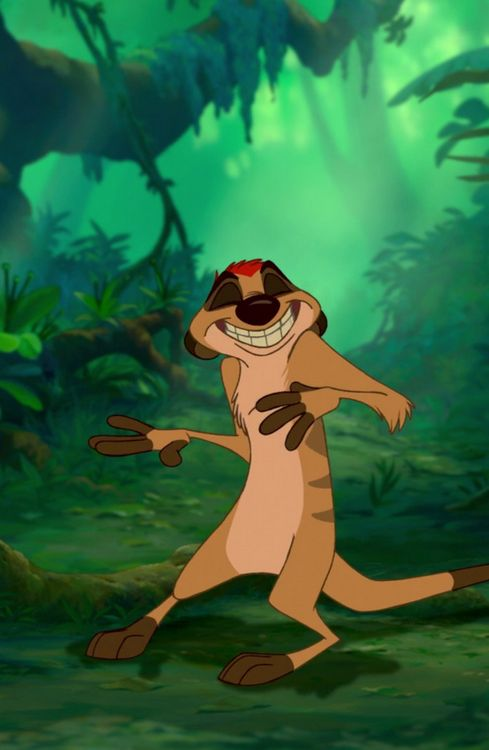 The Lion King - Timon is my favorite.