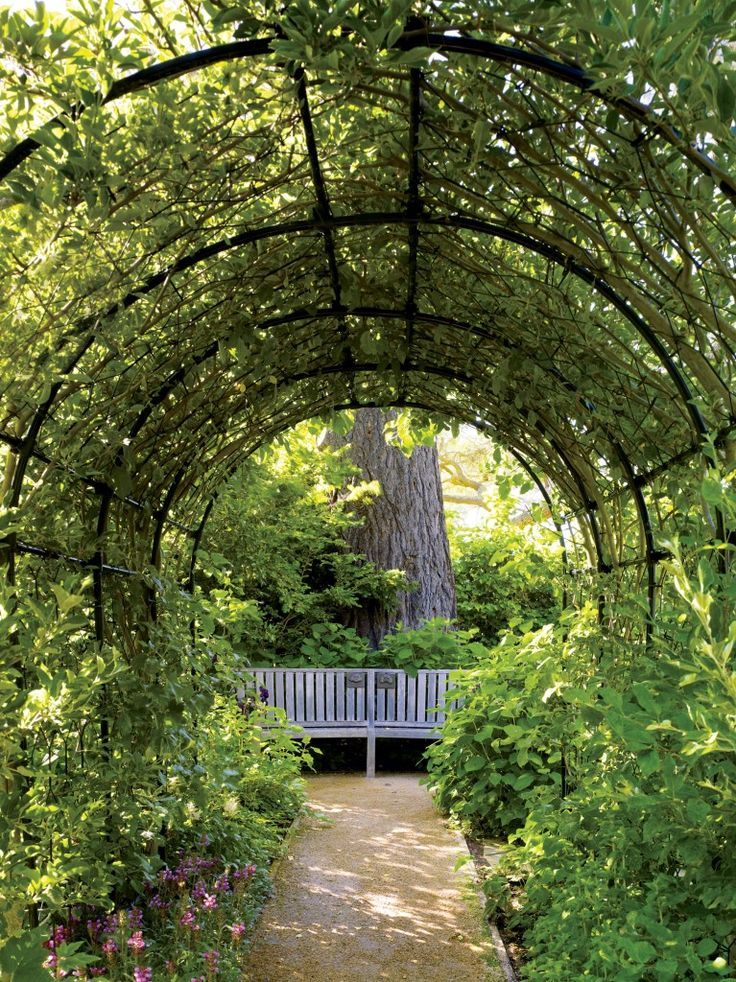 A vine-covered fruit tunnel, shaded walks and moments of repose beneath specimen pines and redwoods.